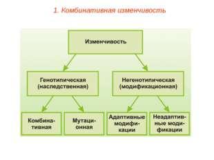 1. Комбинативная изменчивость
