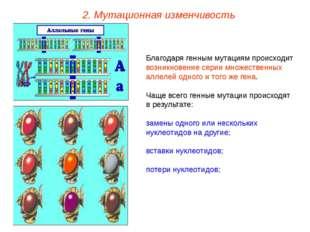 Благодаря генным мутациям происходит возникновение серии множественных аллеле