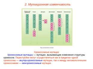 Хромосомные мутации Хромосомные мутации — мутации, вызывающие изменения струк