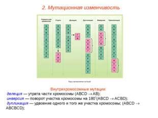 Внутрихромосомные мутации: делеция — утрата части хромосомы (АВСD  AB); инве