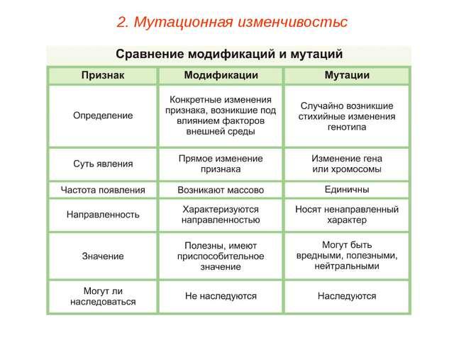 2. Мутационная изменчивостьс