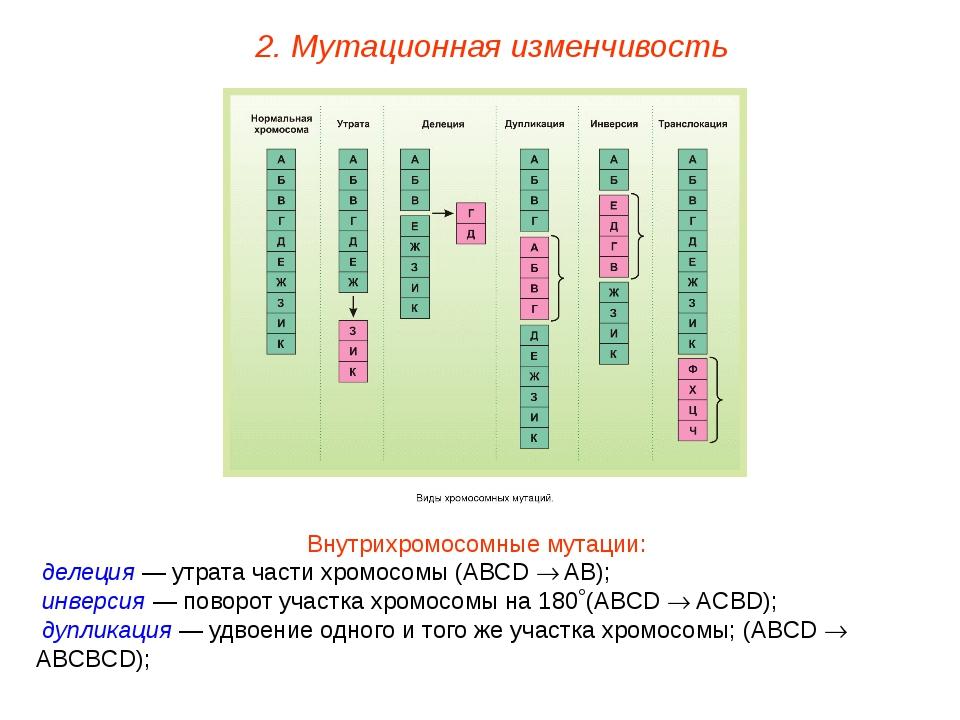 Внутрихромосомные мутации: делеция — утрата части хромосомы (АВСD  AB); инве...