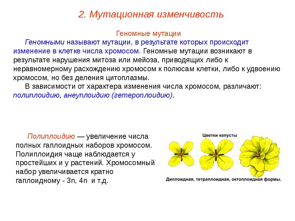 Геномные мутации Геномными называют мутации, в результате которых происходит...
