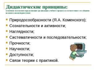 Дидактические принципы: (основные положения определяющие организацию учебного