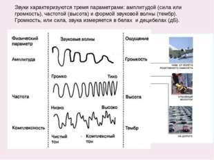 Звуки характеризуются тремя параметрами: амплитудой (сила или громкость), час