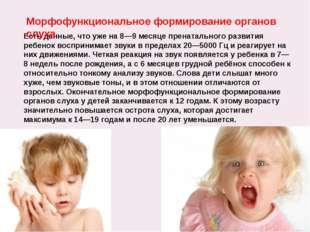 Есть данные, что уже на 8—9 месяце пренатального развития ребенок воспринимае