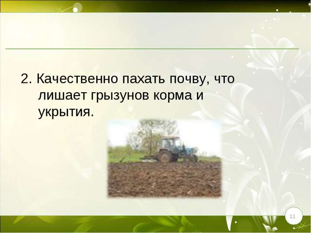 * 2. Качественно пахать почву, что лишает грызунов корма и укрытия.