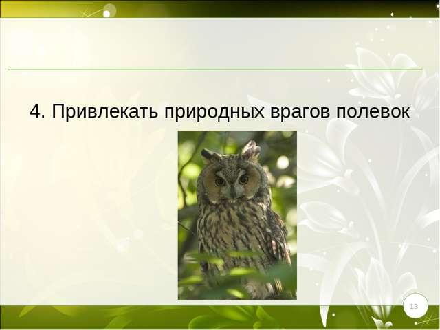 * 4. Привлекать природных врагов полевок