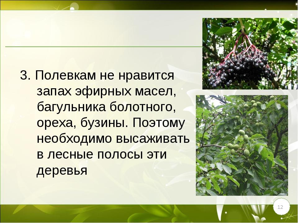 * 3. Полевкам не нравится запах эфирных масел, багульника болотного, ореха, б...