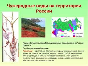 Чужеродные виды на территории России Распределение площадей, зараженных повил