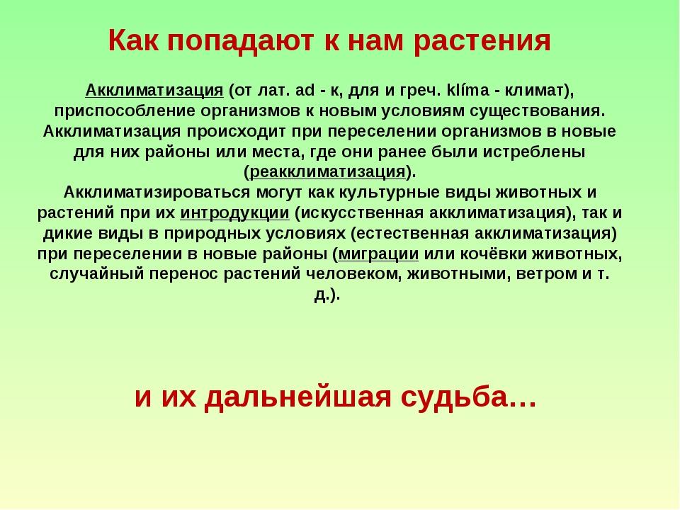 Как попадают к нам растения Акклиматизация (от лат. ad - к, для и греч. klím...