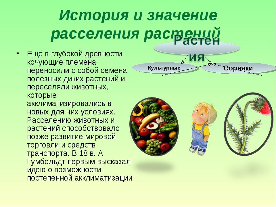 История и значение расселения растений Ещё в глубокой древности кочующие плем...