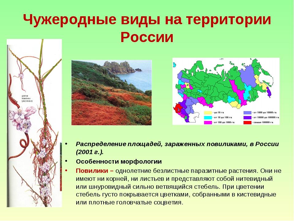 Чужеродные виды на территории России Распределение площадей, зараженных повил...