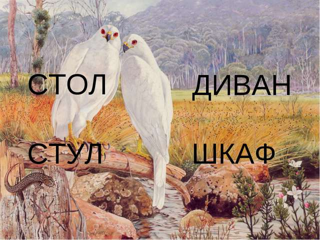 СТОЛ СТУЛ ШКАФ ДИВАН
