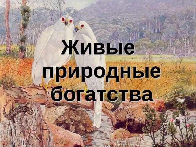 Живые природные богатства