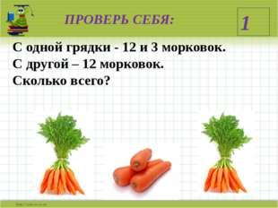 ПРОВЕРЬ СЕБЯ: С одной грядки - 12 и 3 морковок. С другой – 12 морковок. Сколь