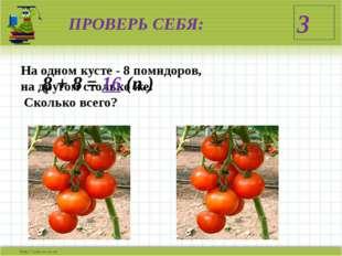 ПРОВЕРЬ СЕБЯ: На одном кусте - 8 помидоров, на другом столько же. Сколько все