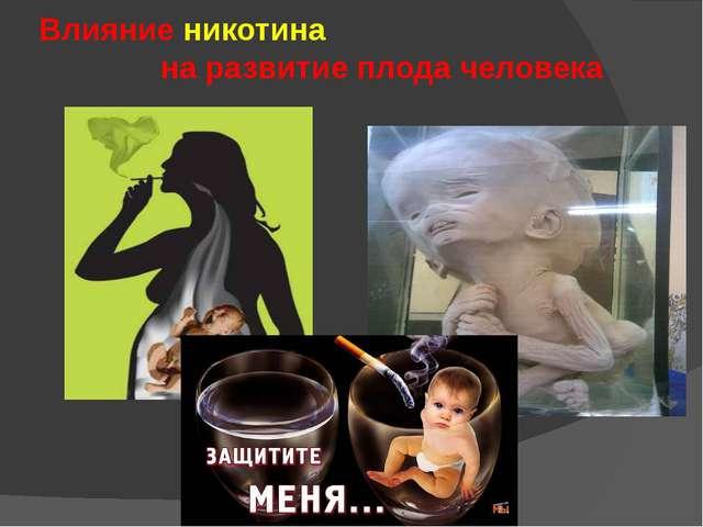 Влияние никотина на развитие плода человека