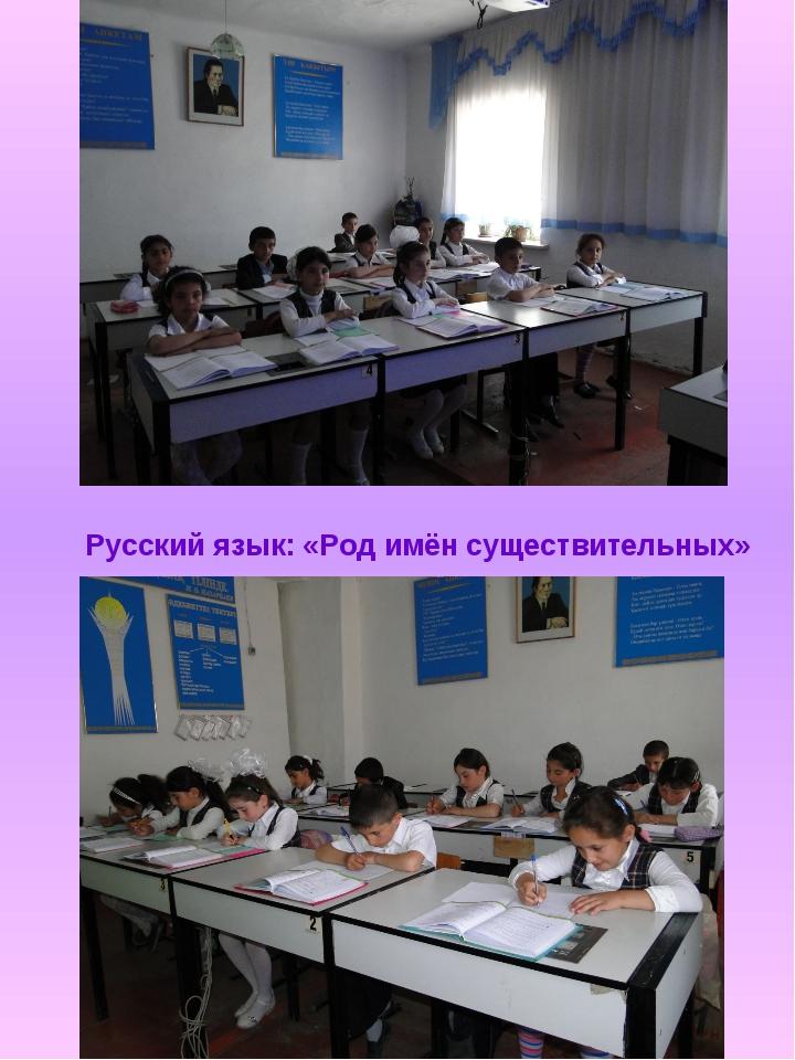 Русский язык: «Род имён существительных»