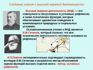 Создание учения о высшей нервной деятельности Высшая нервная деятельность (ВН