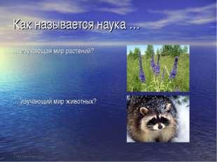 Как называется наука … … изучающая мир растений? … изучающий мир животных?
