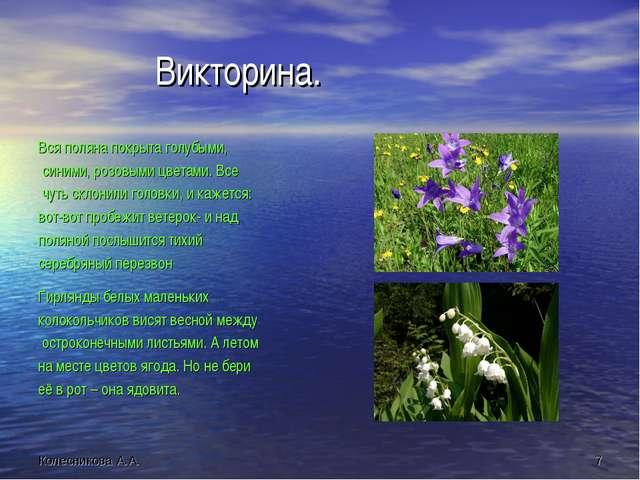 Викторина. Вся поляна покрыта голубыми, синими, розовыми цветами. Все чуть с...