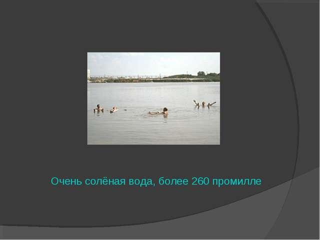 Очень солёная вода, более 260 промилле