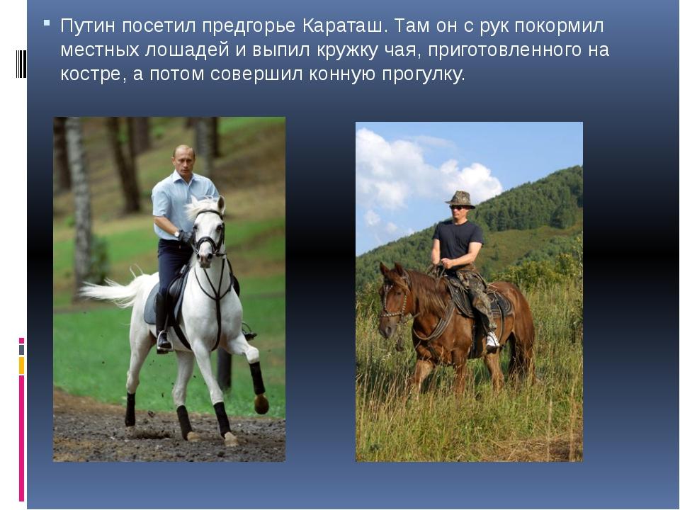 Путин посетил предгорье Караташ. Там он с рук покормил местных лошадей и выпи...