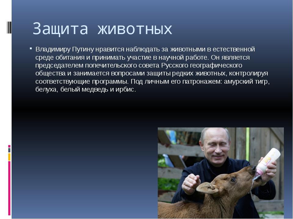 Защита животных Владимиру Путину нравится наблюдать за животными в естественн...