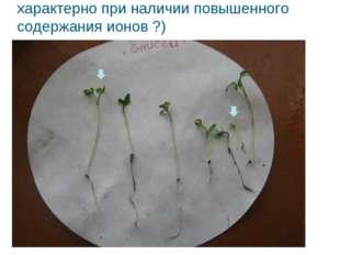 Характер повреждения проростков с.о. «Енисей» (закручивание листочков, характ
