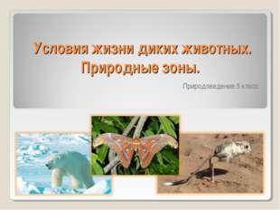 Условия жизни диких животных. Природные зоны. Природоведение 5 класс
