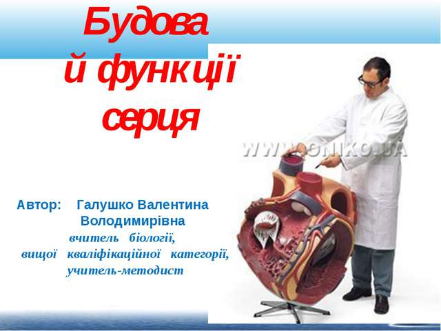 Будова й функції серця Автор: Галушко Валентина Володимирівна вчитель біологі...