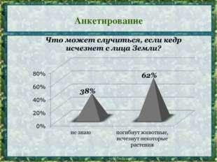 Анкетирование *