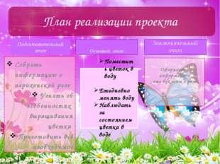 Подготовительный этап Собрать информацию о иерихонской розе Узнать об особенн