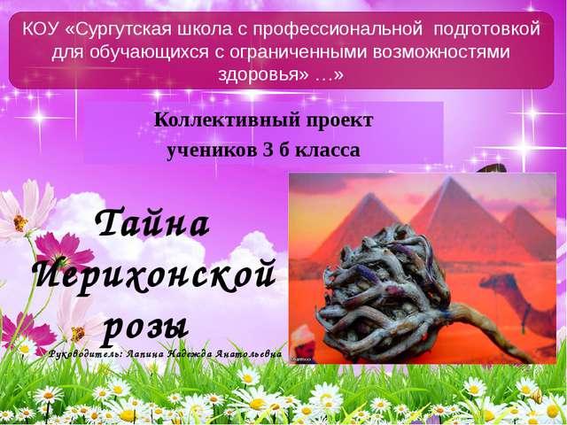 Коллективный проект учеников 3 б класса КОУ «Сургутская школа с профессиональ...
