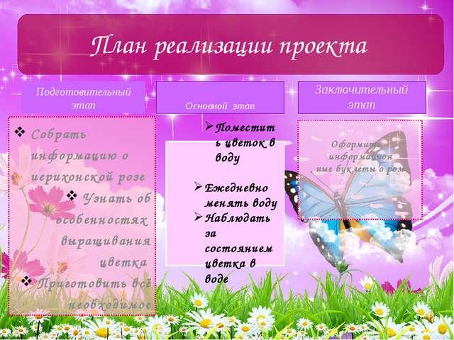 Подготовительный этап Собрать информацию о иерихонской розе Узнать об особенн...