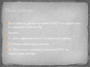 Цель работы: проектирование ООПТ на территории Салаватского района РБ. Задач