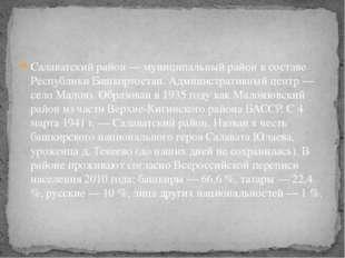 Салаватский район — муниципальный район в составе Республики Башкортостан. Ад