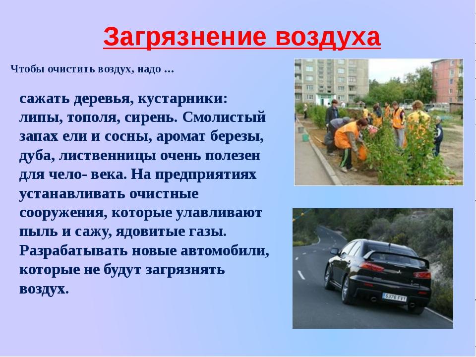 Загрязнение воздуха Чтобы очистить воздух, надо … сажать деревья, кустарники:...