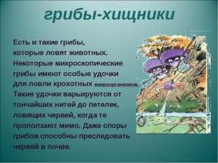 грибы-хищники Есть и такие грибы, которые ловят животных. Некоторые микроско