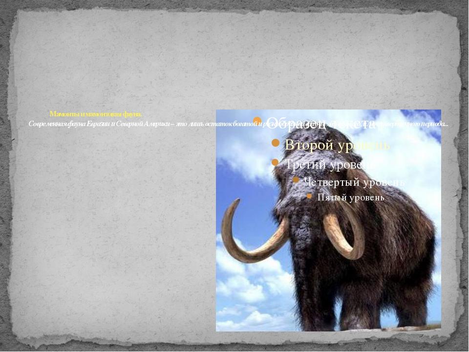 Мамонты и мамонтовая фауна. Современная фауна Евразии и Северной Америки – э...