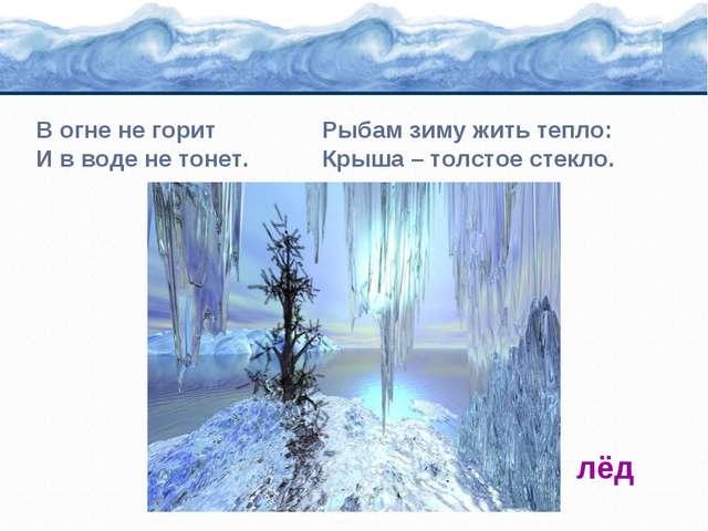 В огне не горит Рыбам зиму жить тепло: И в воде не тонет. Крыша – толстое сте...