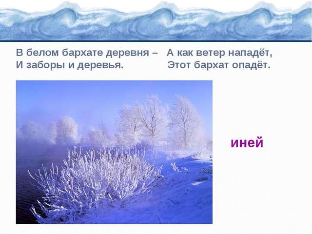 В белом бархате деревня – А как ветер нападёт, И заборы и деревья. Этот барха...