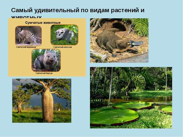 Самый удивительный по видам растений и животных