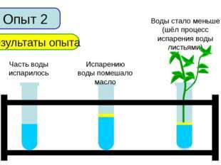 Опыт 2 Результаты опыта Часть воды испарилось Испарению воды помешало масло В
