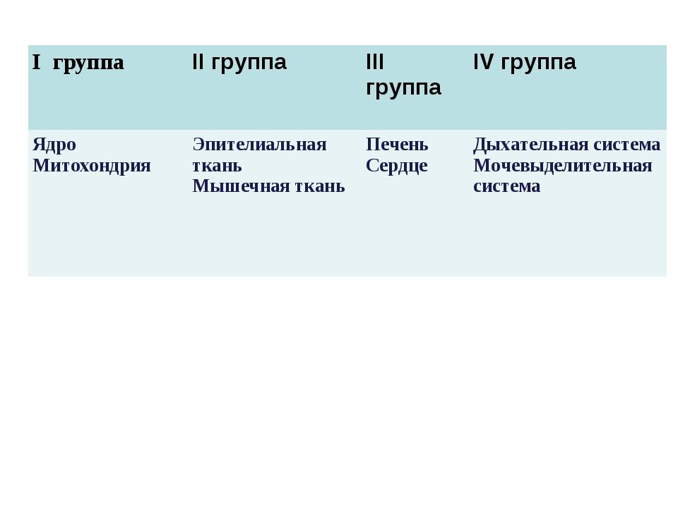 I группа II группаIII группаIV группа Ядро МитохондрияЭпителиальная ткань...