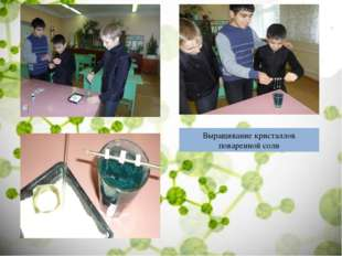 Выращивание кристаллов поваренной соли
