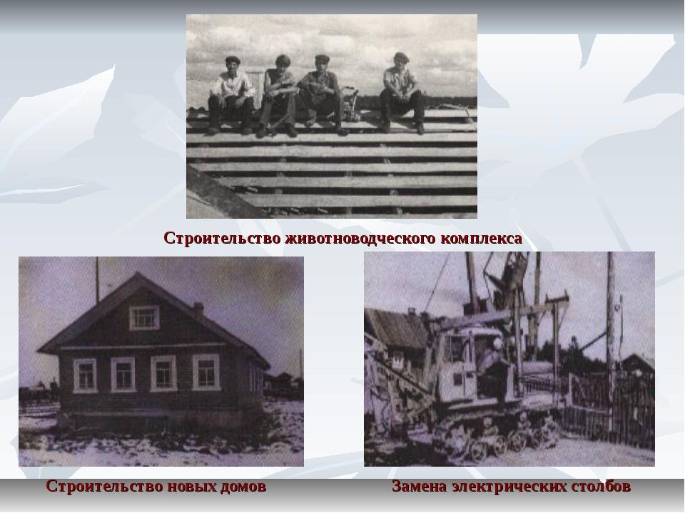 Строительство животноводческого комплекса Строительство новых домов Замена э...