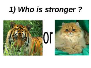 1) Who is stronger ?