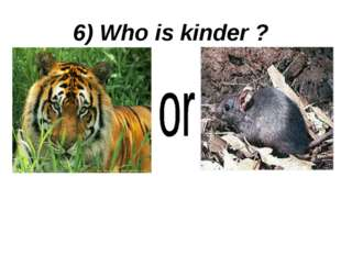 6) Who is kinder ?